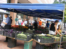 Description: C:\Users\leslie.malone\Desktop\Photos\Farmers Market\CAUSES 405.JPG