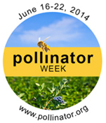 Nation Pollinator Week June 16 - 22, 2014