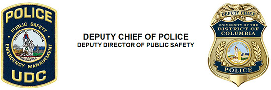 Chief of Police/Director of Public Safety
