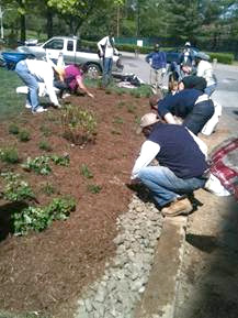 Master Watershed Stewards put the finishing touches on the bioswale at UDC.